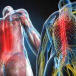 Perguntas frequentes e causas das dores nas costas