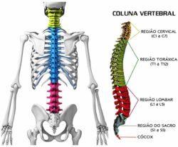 Tratamentos coluna vertebral