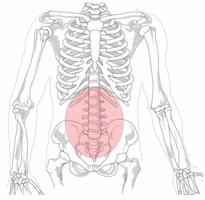 dor na coluna lombar ou lombalgia