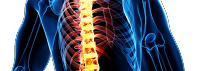 Coluna vertebral: doenças, causas e tratamentos