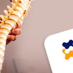 Anatomia da coluna: Região lombar