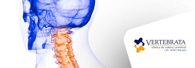 Anatomia da coluna: Região cervical
